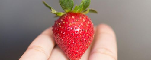 Strawberries, a source of health