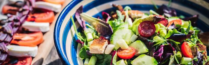 Blood sugar and cellular degeneration, can diet help reduce the risk of breast cancer?