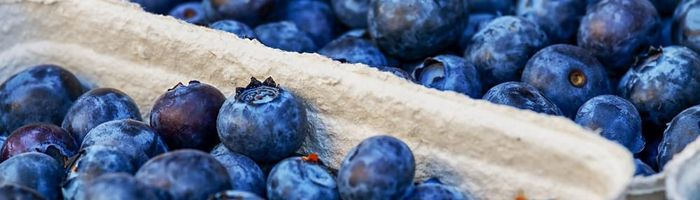 The flavonoids of tea, oranges and berries to protect the retina from the damage of hyperglycemia