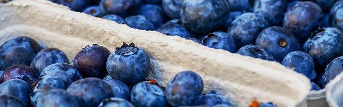I flavonoidi di tè, arance e frutti di bosco per proteggere la retina dai danni dell'iperglicemia