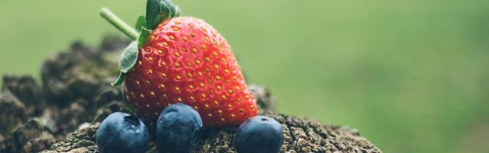 I frutti di bosco e il loro effetto neuroprotettivo