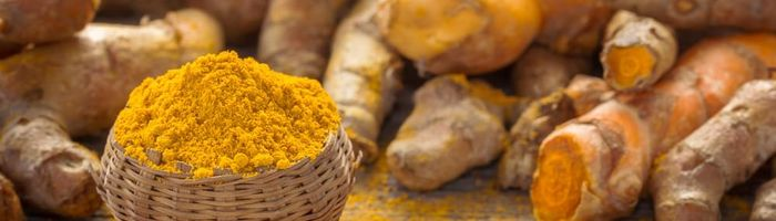 Turmeric: the elixir for a long life against Alzheimer