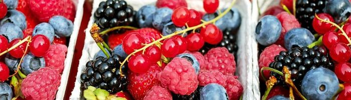 Berries, that's why it's important to include them in your diet