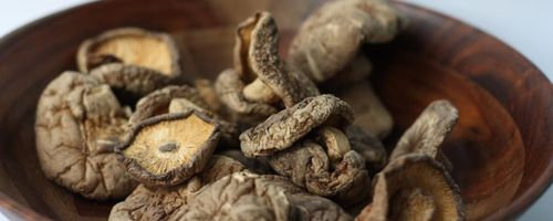 Shiitake, i funghi che proteggono corpo e polmoni dalle infezioni virali e dalle degenerazioni cellulari