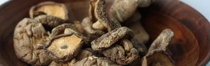 Shiitake, the mushroom that protects the body and lungs from viral infections and cellular degeneration