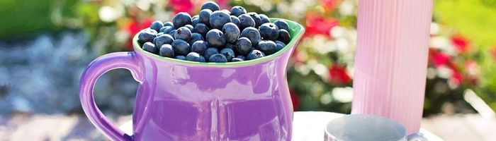 Blueberries, small pearls of health capable of supporting memory and fighting viruses
