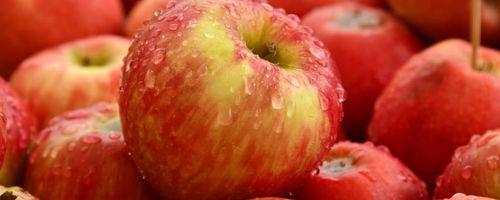 Buccia della mela