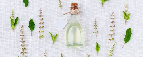 Tea tree and thyme essential oils help against antibiotic-resistant cystitis