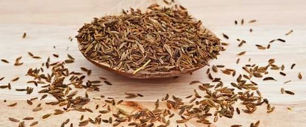 A substance contained in cumin counteracts colitis