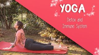 Yoga for the immune system