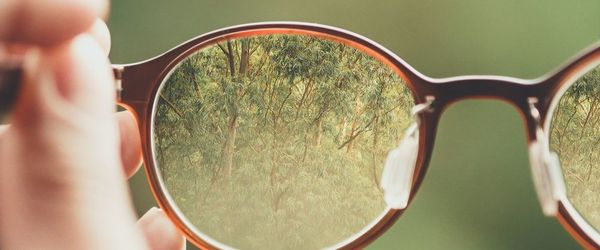 Eyes and health, herbal medicine and nutrition to protect eyesight