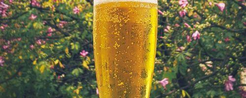 L'uomo felice ha la bocca piena di birra (antico detto egiziano)