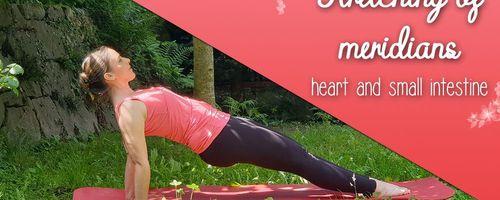 Yoga und Dehnung der Meridiane, Herz und des Dünndarm für den Eintritt in den Sommer
