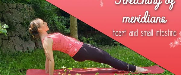 Yoga and stretching of the meridians, heart and small intestine to enter the summer