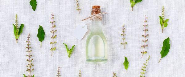 Gengive infiammate e carie? Un aiuto da tea tree e propoli