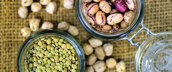 With plant proteins you save the brain from the risk of cognitive decline