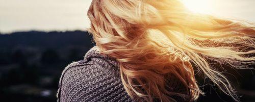 Sägepalme, das Mittel gegen Haarausfall