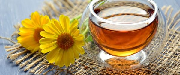Immune system, how to fortify it with tea and herbal teas