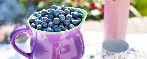 Blaubeeren, die Früchte, die das Sehvermögen retten