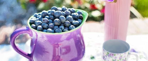 Blueberries, the fruits that save the eyesight