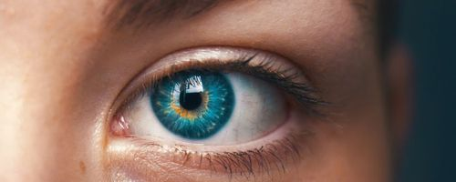 Carotenoids improve night vision