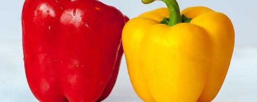 Paprika, die Farben der Gesundheit