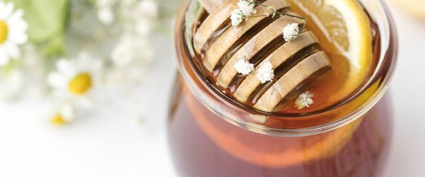 Honey, properties and benefits of this superfood