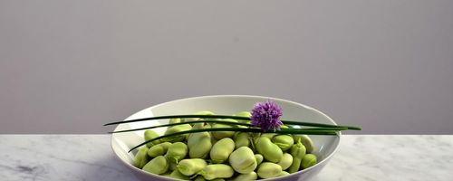 Risotto mit Fava-Bohnen