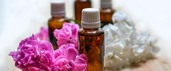 Essential oil blends against mosquitos