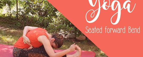 The seated forward bends in yoga, benefits for all the body