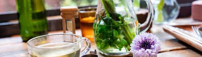 Brain regeneration Part 3, the help of herbal medicine