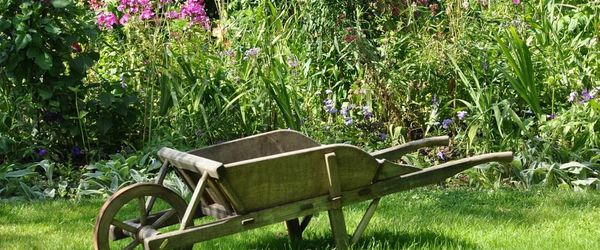 Vegetable garden, health and relax Part 4, chives, parsley and raspberry