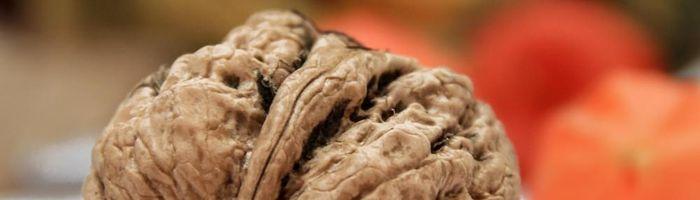 Walnuts, little elixirs of long life
