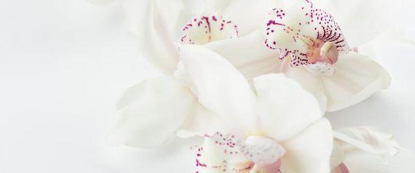 Slow Cosmetique, come trattare le imperfezioni della pelle Parte 1, acne e punti neri