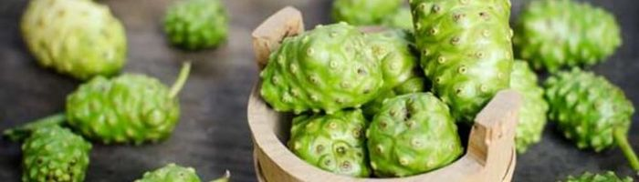 Noni, the juice with a thousand properties