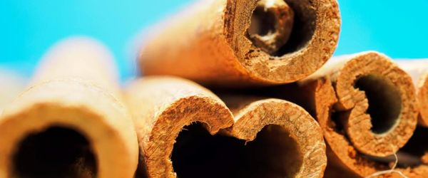 Cinnamon, the spice of health