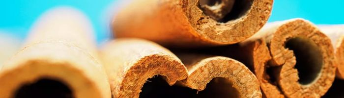 Cinnamon, the spice of health