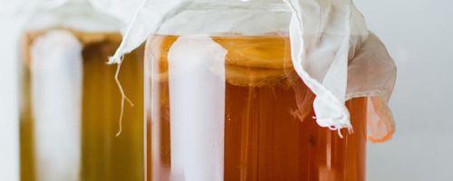 Kombucha, the immortal health elixir