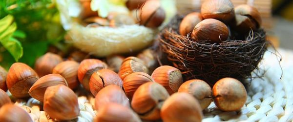 Food combinations and cooking methods, hazelnuts