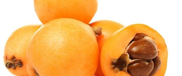 Loquat-Früchte