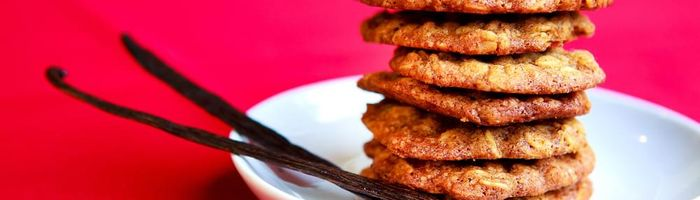 Fat burning diet Part 2, the spices ginger and vanilla
