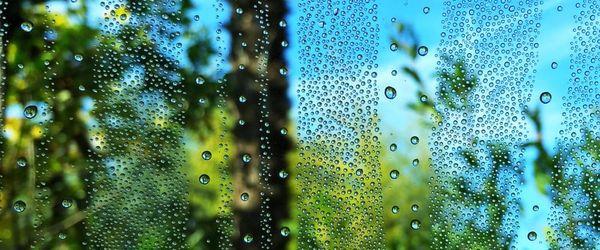 Natürlicher Lebensstil 2, wie man übermäßige Feuchtigkeit und zu trockene Luft zu Hause bekämpft