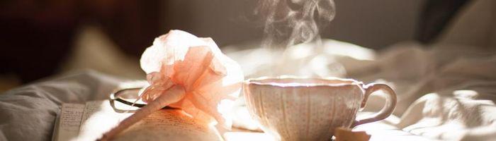 Black currant, herbal tea