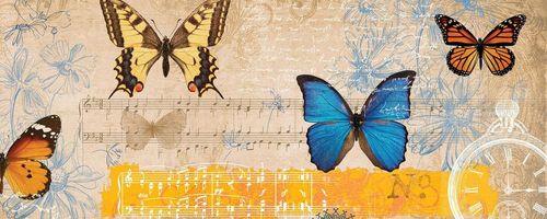 Musik, Geräusche und Geräusche