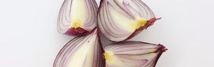 Combinazioni alimentari e metodi di cottura, la cipolla Seconda Parte