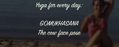 Gomukhasana, the yoga pose that improves the posture and the breath
