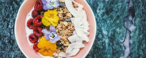 Immunsystem und Ernährung, Gesundheit fängt bei Tisch an