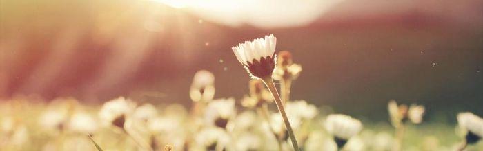 Salute e bellezza, le cure di primavera