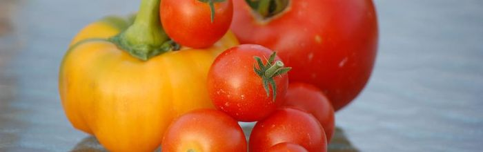 Vegetable garden, health and relax Part 5, tomatoes and zucchini
