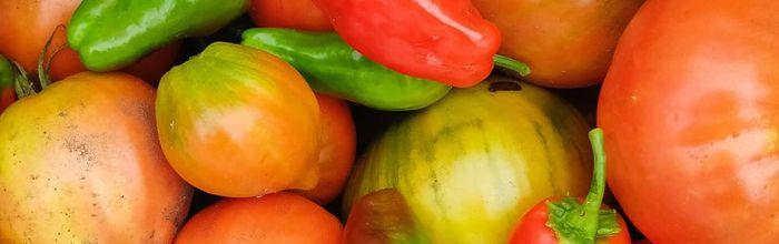 Combinazioni alimentari e metodi di cottura, i peperoni